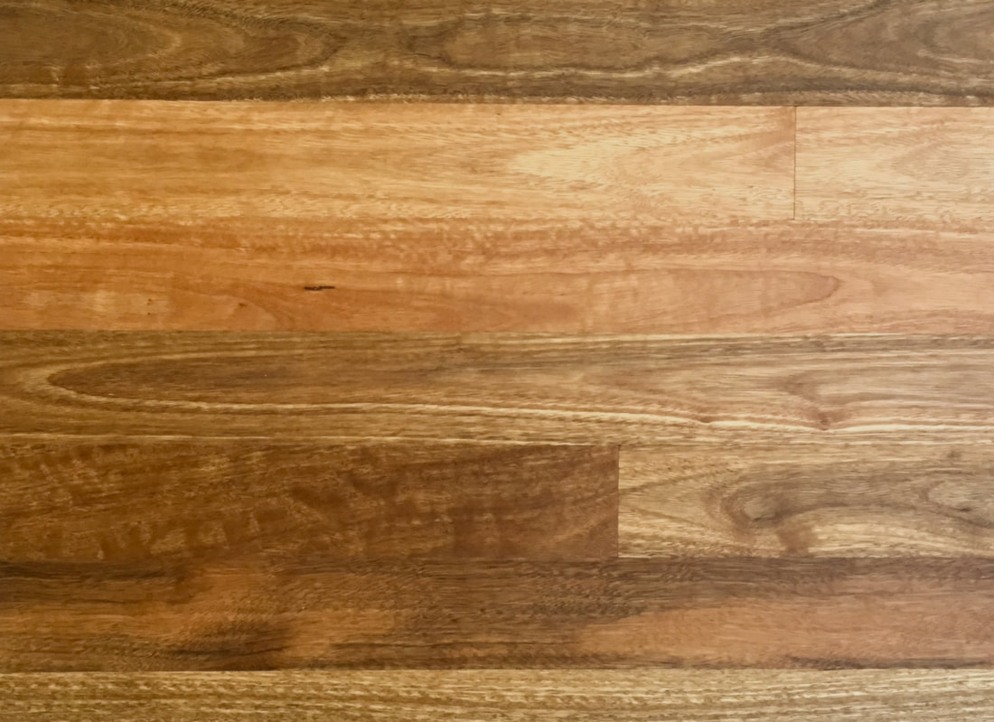 Picture - Australian Spotted Gum solid flooring. ©.
