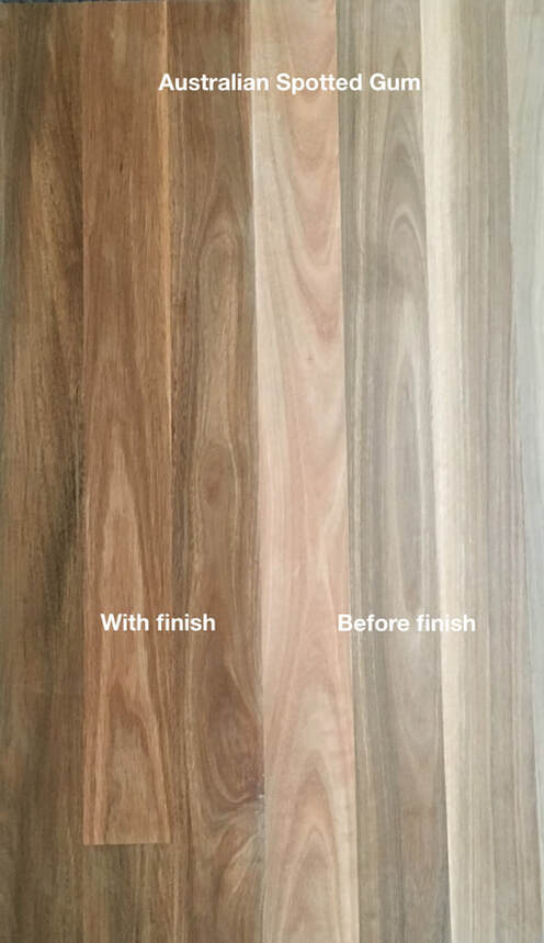 Picture: Australian Spotted Gum flooring with and without finish. A Eucalyptus wood loved for its brown through cream colors and mix of cathedral grain and fiddleback grain.©˙