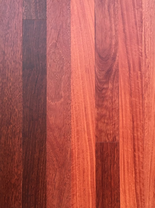 Australian Brushbox flooring has true warm honey colors, and a mix of cathedral grain and satiny fiddleback grain. ©